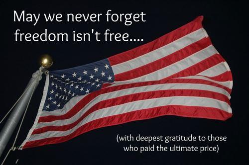 Veterans' Day Flag
