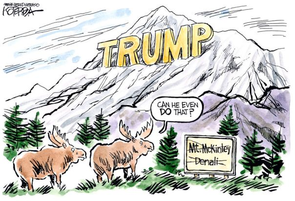 Mount Trump Cartoon