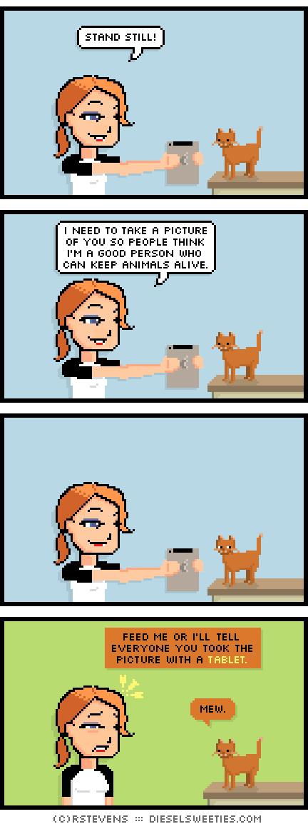r-stevens-diesel-sweeties-keep-the-cat-alive